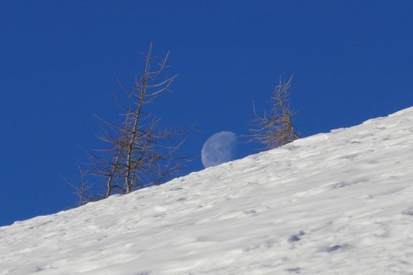 Der Mond gab uns eine Zeit lang die Richtung vor