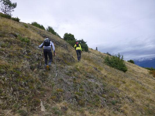 Aufstieg über weglosen, Almwiesen