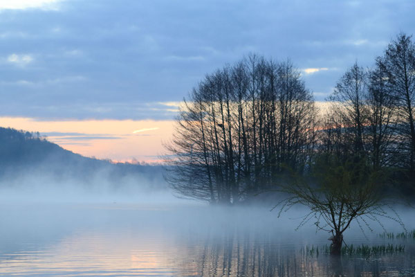 Les étangs de Limé au lever du soleil