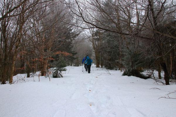 Randonnée à Haystack Mountain, VT, USA