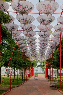 Franklin PArk et le festival des lanternes