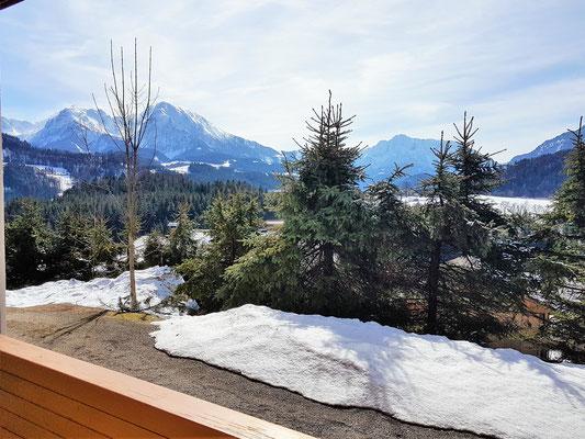Balkonaussicht - Haus Löger Apartments - Windischgarsten