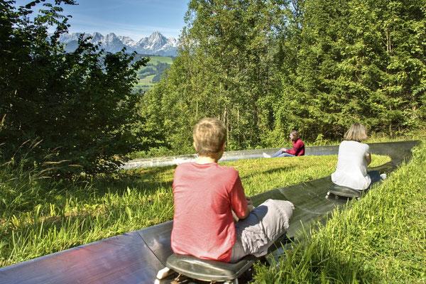 Sommerrodelbahn und Alpincoaster