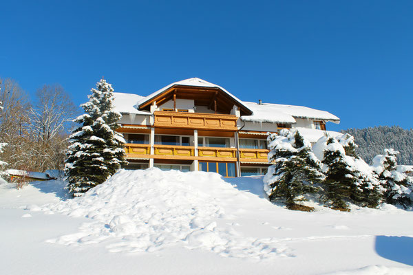 Haus Löger Apartments Balkone im Winter - Windischgarsten