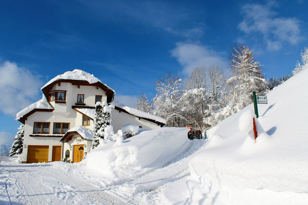 Viel Schnee Jänner 2019 - Haus Löger Apartments - Windischgarsten