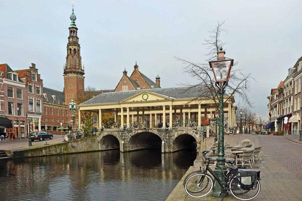 koornbrug leiden, stad&land wandeling, wandelroute Leiden, rondwandeling, wandelen met de hond, plezier voor je huisdier