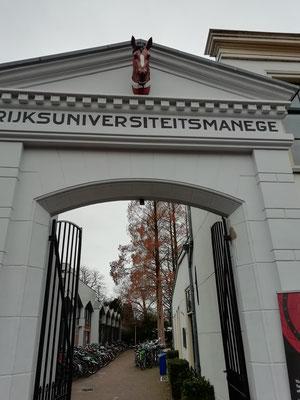 rijksuniversiteit leiden, stad&land wandeling, wandelroute Leiden, rondwandeling, wandelen met de hond, plezier voor je huisdier
