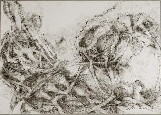 Insekt | Pastellkreide/Papier | 2004 | 60x42cm
