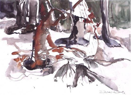 Unterholz | Aquarell auf Papier | 1993 | 42x32cm