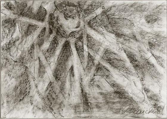 Flechte | Pastellkreide/Papier | 2004 | 30x42cm