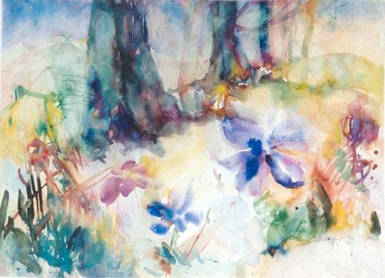 Leberblumen | Aquarell auf Papier | 1998 | 40x60cm