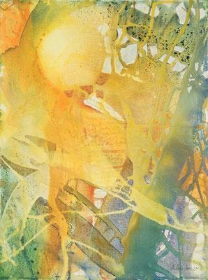 17 O.T. Erdfarben auf Leinwand, 2008 60 x 80 cm