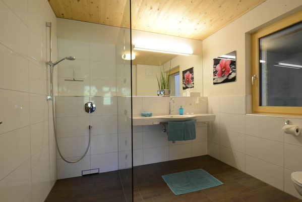 appartement lobspitz - badezimmer 1