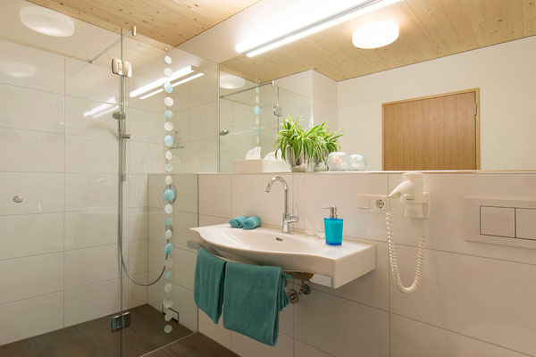 appartement lobspitz - badezimmer 2