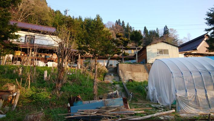 畑から見上げたところ。右手前が鶏小屋、上段の建物群は、左に蔵、奥に母屋、右に農作業ガレージや工作室など。