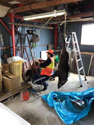 農機具小屋。シカなどを吊り下げて解体できるようになっている。