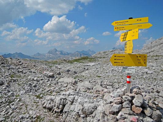 Hochbrunnsulzen 2.360m (17.07.2015)