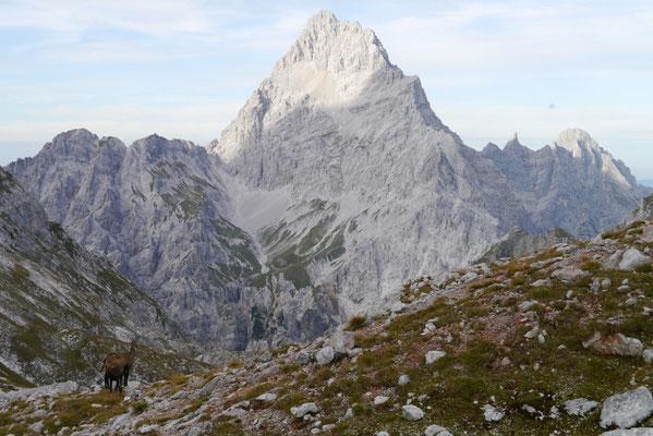 Trischübel Pass 1.764m Blick auf Watzmann, 19.09.2014