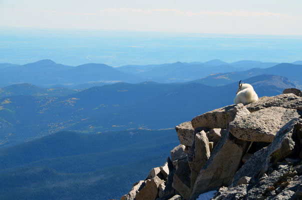 Mount Evans 4.348m, 02.10.2013