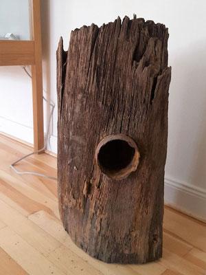 Holzdeichel von 1168 mit Abzweig
