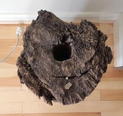 Holzdeichel von 1168, das Loch (Durchmesser von ca. 8 cm) für den Wasserdurchfluß wurde mit einem heißen Stab in den Stamm gebrannt