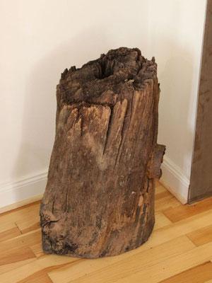 Holzdeichel von 1168 im Heimatmuseum Otterberg