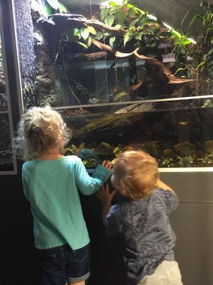 Oslo Reptile Park