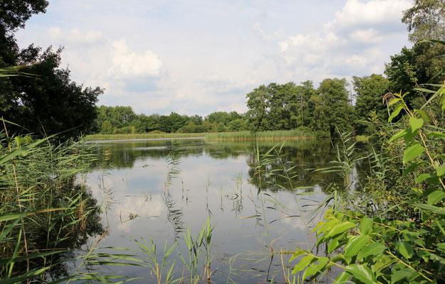 Gut Sunder - eine faszinierende Landschaft für unser Wassertraining