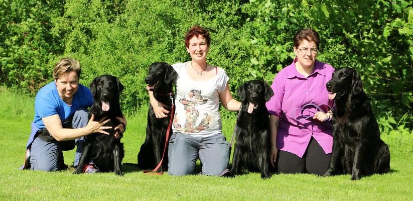 Fiona mit Meo, Caro mit Daley und Anjuk, Sandy mit Gin