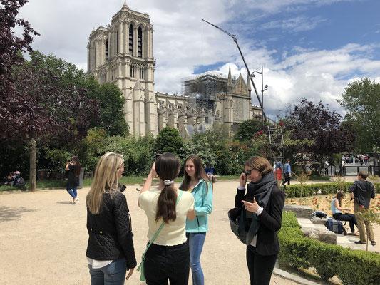 Guide privé Notre Dame Ile de la Cité