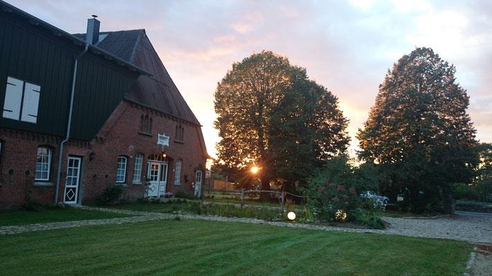 der Garten in Richtung Westen am späten Abend