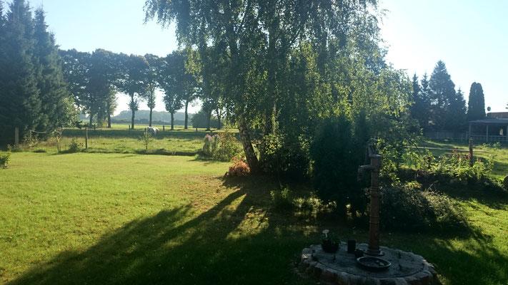 Gartenblick Richtung Osten