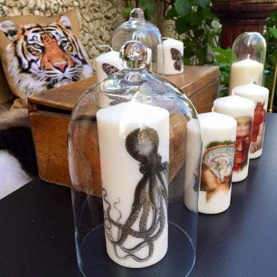 Bougies poulpe et anatomiques