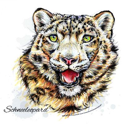 Schneeleopard | Original-Farben