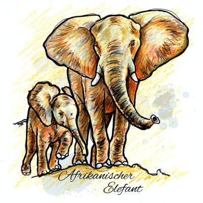 Elefanten | Original-Farben