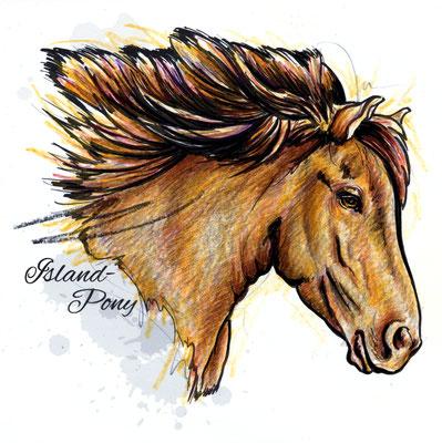 Pferd | Original-Farben