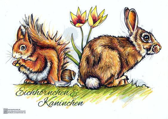 Eichhörnchen & Kaninchen | Original-Farben