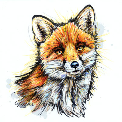 Fuchs | Original-Farben