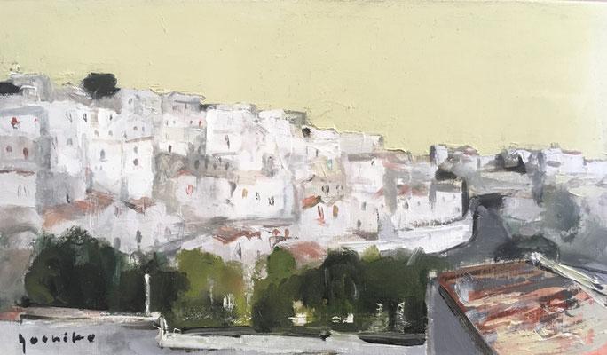 「モンテ サンタンジェロ」 M6 油彩 前回のイタリア旅行で一人、歩いて探した素敵な場所。。。お天気によってかすんで真っ白になることもありました。