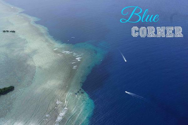 Blue Corner ist der Traum eines jeden Tauchers.