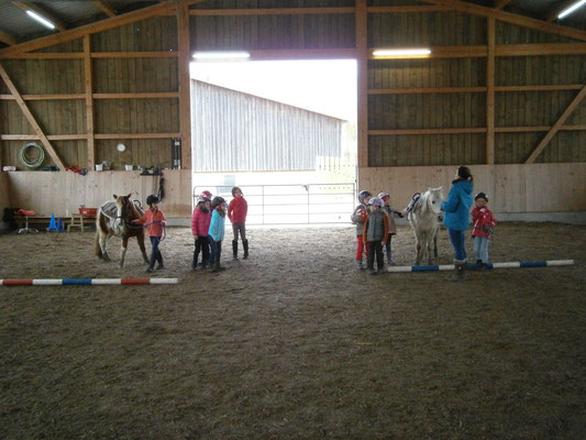 Kindergeburtstag mit Ponys 4