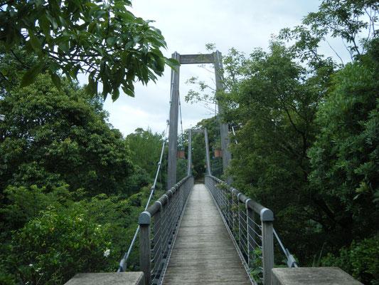 豊田湖畔キャンプ場 吊り橋の写真