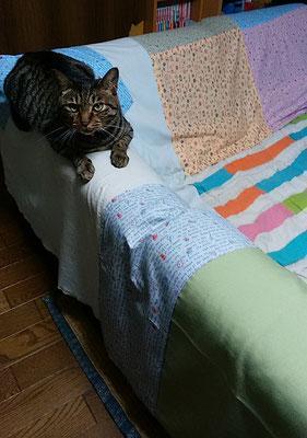 ララ、ソファーで!
