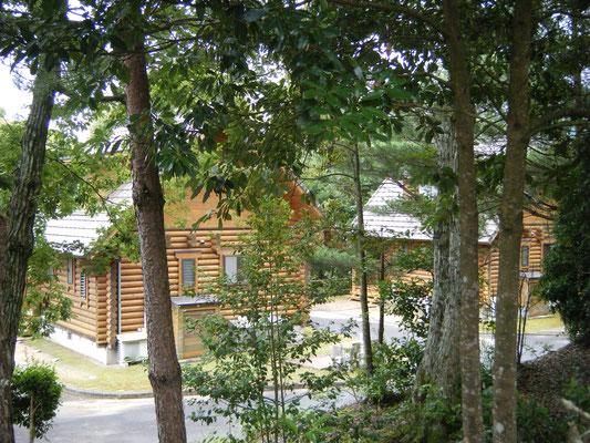 豊田湖畔キャンプ場 ロッジの写真