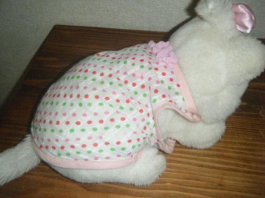 ペット服試作 の写真