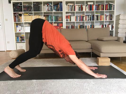 7// Adho Mukha Svanasana :: herabschauender Hund // versuche den Rücken ganz zu strecken und beuge dazu die Knie. Weitgefächerte Hände drücken flach in den Boden. Steißbein zieht Richtung Decke :: YOGAJA Katja Bienzeisler