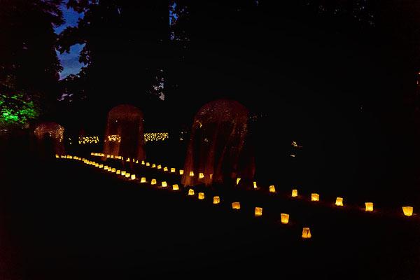 Geisterhafte Figuren schweben über einen beleuchteten Parcour