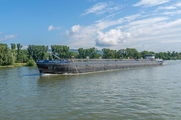 Der Tanker Echternach mit wenig Tiefgang flußabwärts auf dem Rhein