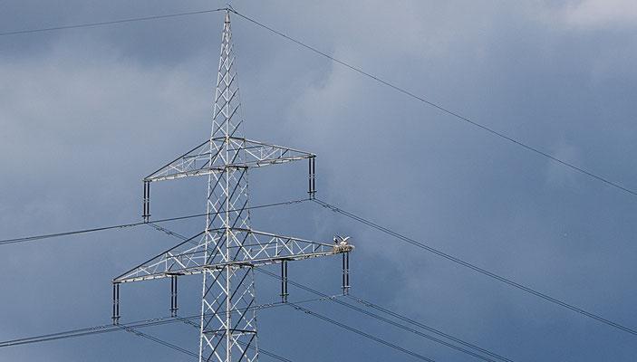 Storchennest auf einem 110-kV-Hochspannungsmast