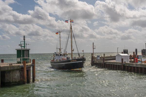 Ein Segler fährt in den Lister Hafen ein